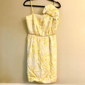 Sariah Anthropologie dress 💛